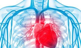 que-son-las-enfermedades-cardiovasculares