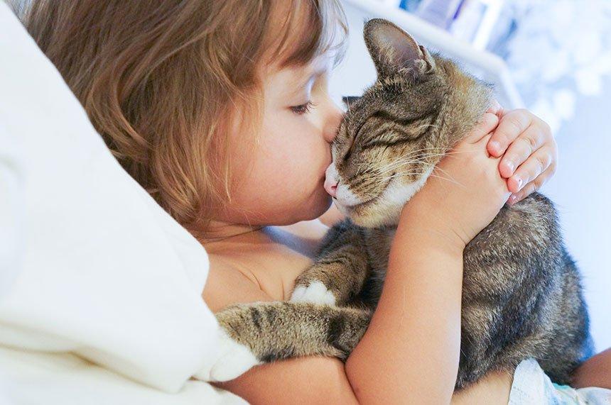 mascotas_salud_cardio_ninos