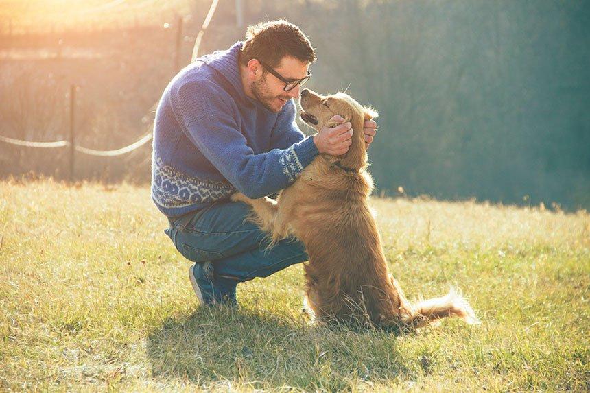 mascotas_salud_cardio_paseo