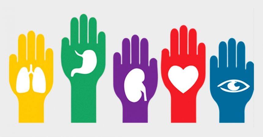 donacion_organos